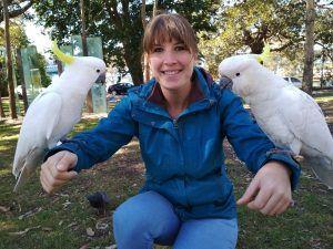 aves australianas